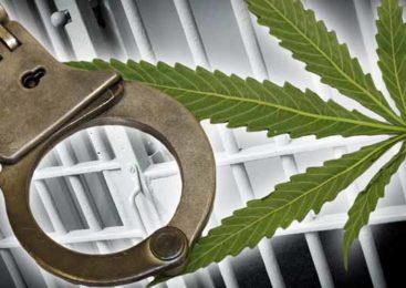Наказание за сбыт наркотиков в особо крупном размере
