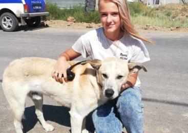 Собаку спасла и себе забрала