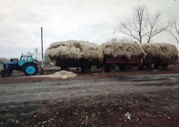 Акмолинские полицейские раскрыли кражу 32 тонн ячменной соломы